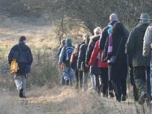 Gruppenführung mit Waldführer Peter John